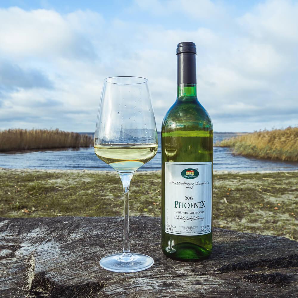 Weißwein Phoenix 2017 ht Schloß Rattey Inselmühle Usedom 1